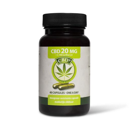 Jacob Hooy 60 Cbd capsules